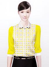 <font color='#FFCC33'>女士衬衣CY-01</font>
