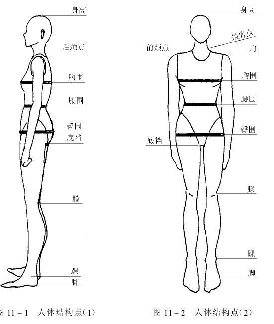 工作服尺寸测量